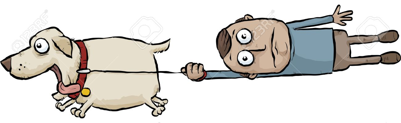 29157084 a running cartoon dog pulls its owner on a leash stock photo