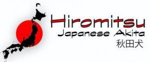 Hiromitsu akita kennel